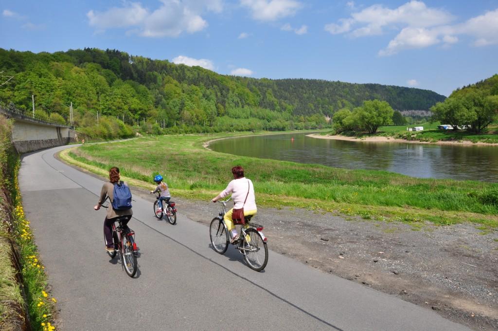 Radfahrer auf dem Elberadweg